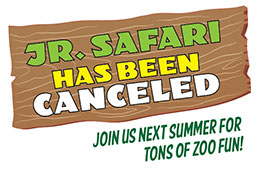 Jr+Safari+Cancelled+-+295x190-01