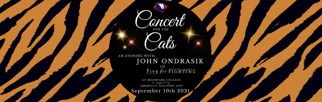 Concert for the Cats banner-min
